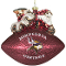 Minnesota Vikings Peggy Abrams Glass Christmas Tree Ornament