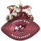 Tampa Bay Buccaneers Peggy Abrams Glass Christmas Tree Ornament
